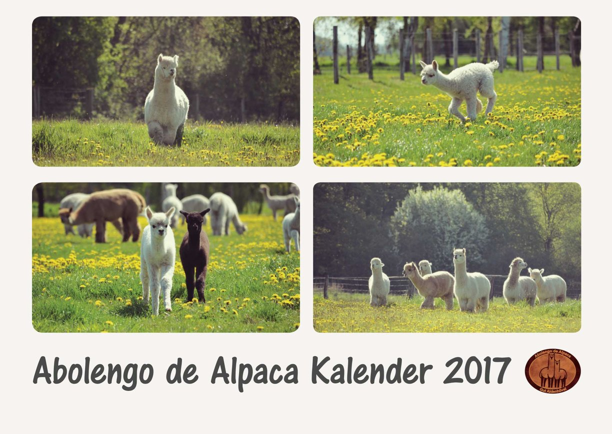alpaka kalender abolengo de alpaca. Black Bedroom Furniture Sets. Home Design Ideas